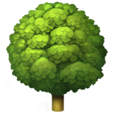 Deciduous Tree (Animals & Nature - Plant-Other)