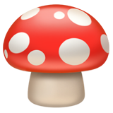Mushroom (Food & Drink - Food-Vegetable)