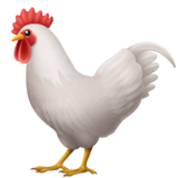 Rooster (Animals & Nature - Animal-Bird)