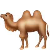 Two-Hump Camel (Animals & Nature - Animal-Mammal)