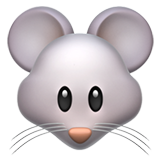 Mouse Face (Animals & Nature - Animal-Mammal)