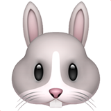 Rabbit Face (Animals & Nature - Animal-Mammal)