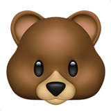 Bear Face (Animals & Nature - Animal-Mammal)