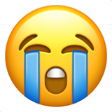 Loudly Crying Face (Smileys & People - Face-Negative)