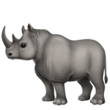 Rhinoceros (Animals & Nature - Animal-Mammal)