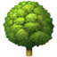 Deciduous Tree Emoji (Apple)