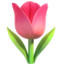 Tulip Emoji (Apple)