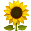 Sunflower Emoji (Apple)