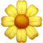 Blossom Emoji (Apple)