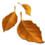 Fallen Leaf Emoji (Apple)