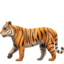 Tiger Emoji (Apple)
