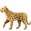 Leopard Emoji (Apple)