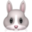 Rabbit Face Emoji (Apple)