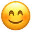 Smiling Face With Smiling Eyes Emoji (Apple)