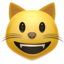 Grinning Cat Face Emoji (Apple)