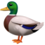 Duck Emoji (Apple)