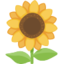 Sunflower Emoji (Facebook)