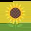 Sunflower Emoji (Google)