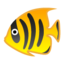 Tropical Fish Emoji (Google)